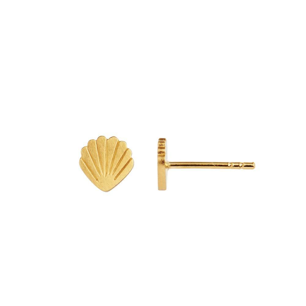 Petit Shell Earring Gold-35