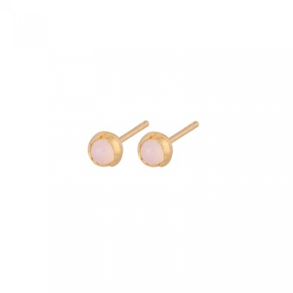 Aura Rose Earsticks Forgyldt-31