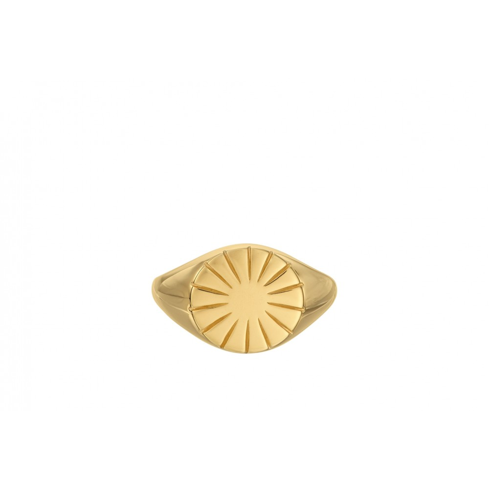 Era Signet ring - forgyldt - str. 55