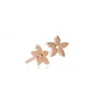Magnolia Earsticks Rosa Forgyldt Mat-20