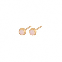 Aura Rose Earsticks Forgyldt-20